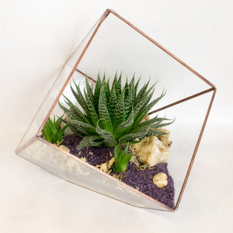 Флорариум в кубе