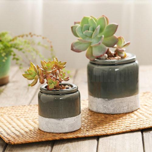 Горшки для растений Черничный джем