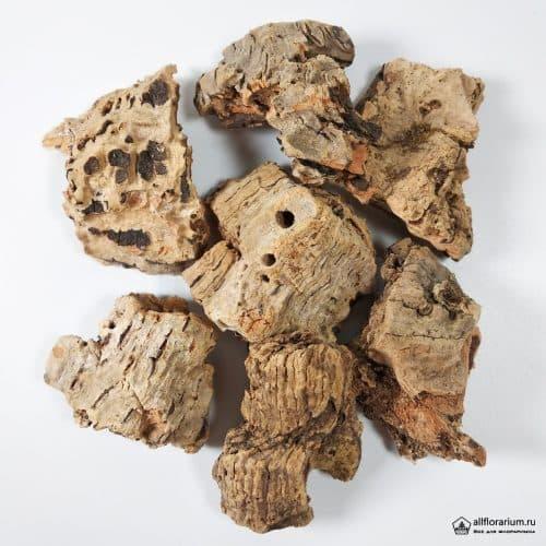 Кора пробкового дерева натуральная - Все для флорариума