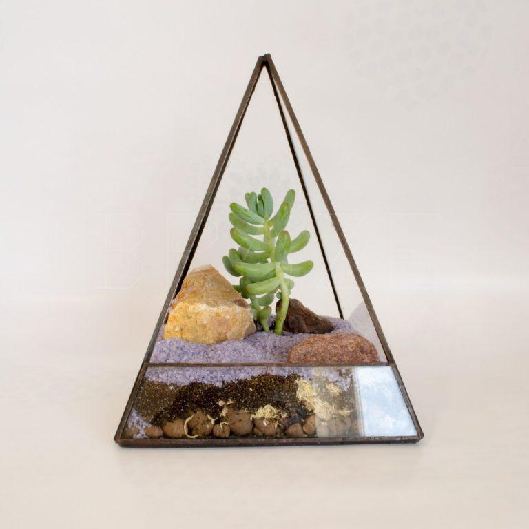 Мини-флорариум в пирамиде