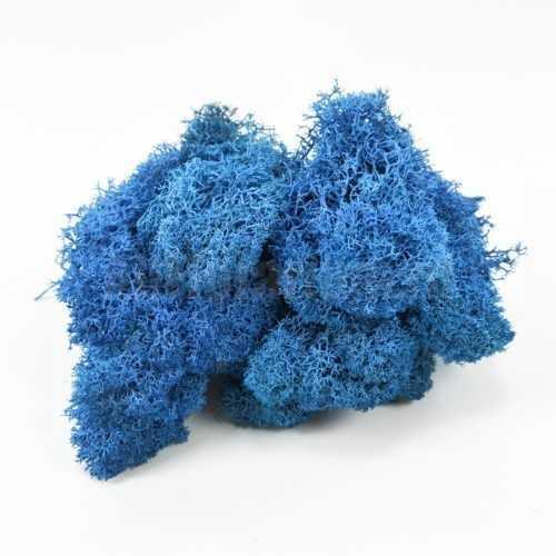Мох Ягель стабилизированный голубой - Все для флорариума